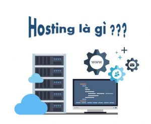 vai trò của hosting, hosting wordpress
